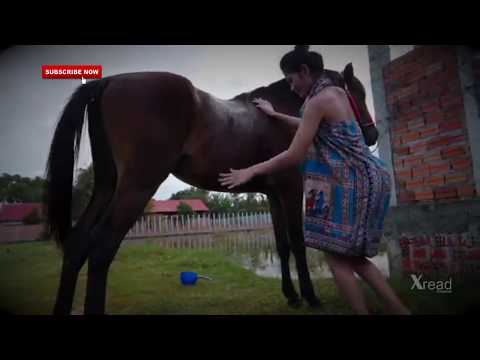 Fantastis !! Gadis cantik dengan kuda kesayangannya sedang melakukan beginian