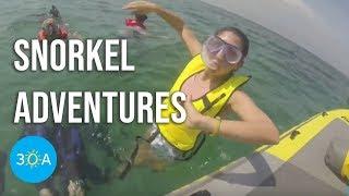 30A Tours Snorkel Adventure  🌊🐠