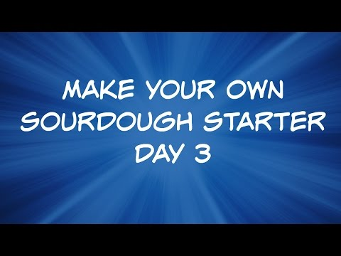 How to Make Your Own Sourdough Starter - Day 3