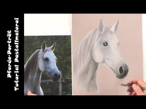 Pferd zeichnen / Pastellmalerei: Pferdeporträt [Teil2]