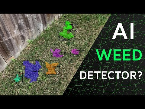 AI Weed Detector — Immersive Limit