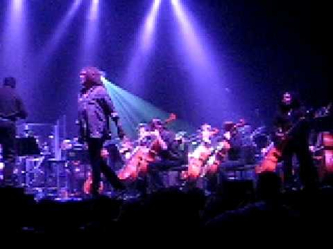 Immigrant Song - The Music of Led Zeppelin and Windborne Symphony