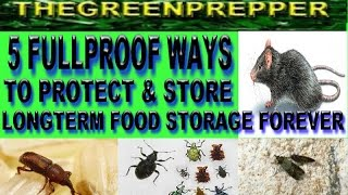 5 FULLPROOF WAYS TO PROTECT & STORE LONGTERM FOOD STORAGE FOREVER  (  DOOMSDAY PREPPERS SHTF WROL )