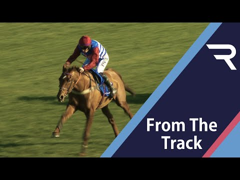 Tritonic shoots clear to win the 2021 Close Brothers Adonis Juvenile Hurdle at Kempton - Racing TV