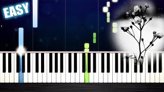 Mariage d'Amour (Spring Waltz) - EASY Piano Tutorial by PlutaX