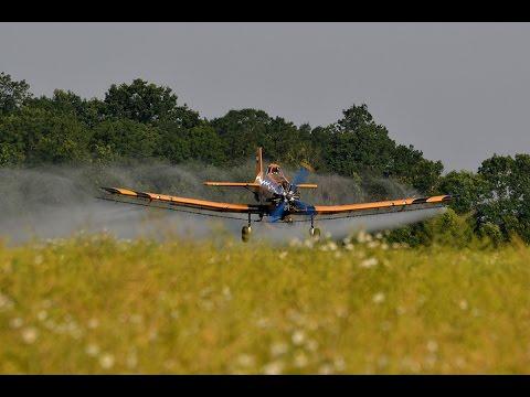 PZL-Mielec M-18 Dromader spraying late colza near Battonya, Hungary