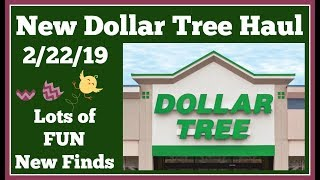 New Dollar Tree Haul 🤑 2/22/19 Lot of Fun New Items