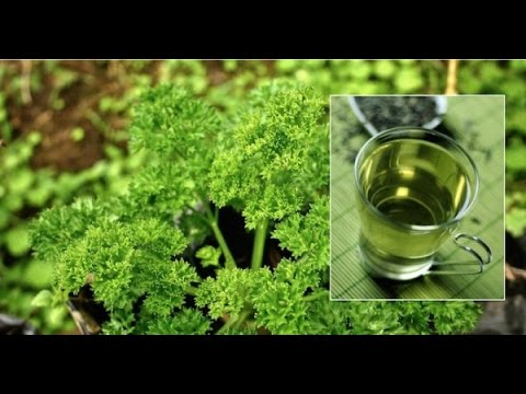 100% Natural Urinary Tract Infection Cure – Just One Ingredient