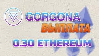 ХАЙП GORGONA.IO ВЫПЛАТА 0.30 ETHEREUM. ОБЗОР ОБНОВЛЕНИЙ GORGONA