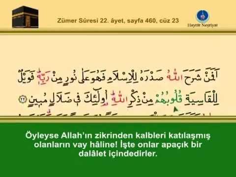 Fatih Çollak - 459.Sayfa - Zümer Suresi (11-21)