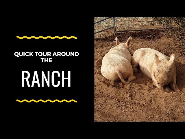 Quick tour around the ranch (2019).