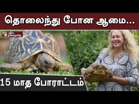 A pet tortoise was reunited with her owner in Britain after being found in a garden 15 months after escaping from a home just a few blocks away. tortoise, Sybil, had escaped from her home about 15 months earlier. Painter lives only a few blocks from the garden where the reptile was found.