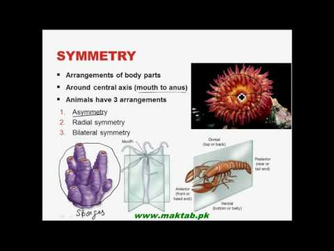 FSc Biology Book1, CH 10, LEC 2:...