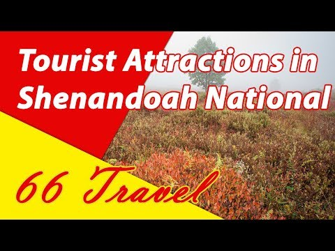 List 8 Tourist Attractions in Shenandoah National Park, Virginia | Travel to United States