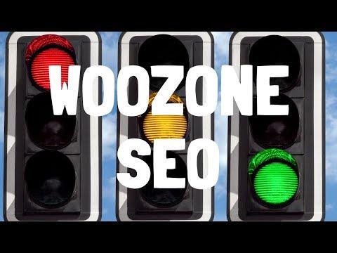 OPTIMISING (optimizing) a WOOZONE PRODUCT with Yoast SEO