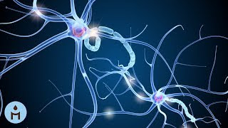 Powerful Brain, Deep Brain Stimulation, Relaxing Delta Wave Sounds, Magnetic Minds, Focus Music