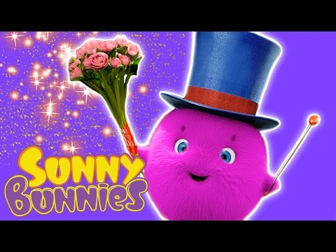 Cartoon ★ Sunny Bunnies – HOCUS-POCUS ★ Funny Cartoons for Children
