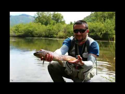 Fly Fishing Lonquimay Chile 2018-2019