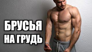 видео Отжимания на брусьях: какие мышцы работают, виды и техника выполнения, схема и программа тренировок