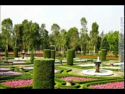 taman-bunga-nusantara-wisata-cianjur-bogor-yang-romantis