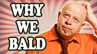 Why do we go Bald?