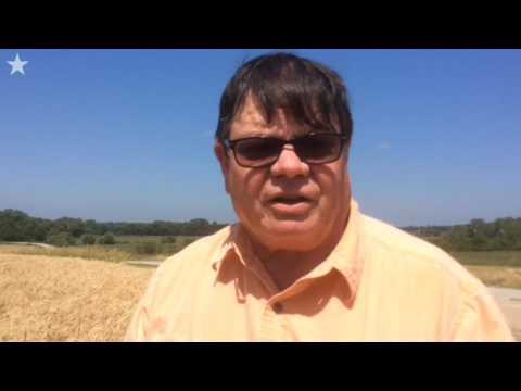 Wheat, Cuba and Royals baseball