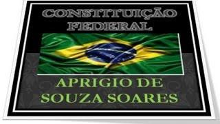 Constituição Federal  ART 1° ao 4°