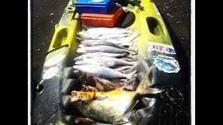 Robalo, Badejo e Pescada na Engenhoca - Pesca com Caiaque - Kayak Fishing- Leogafanha - Dicas