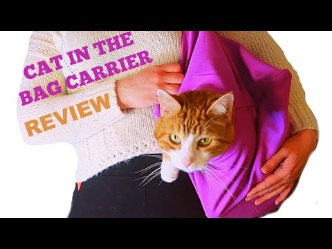 Does The Cat In The Bag Carrier Work?   My Cats Review