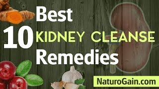 10 Best Kidney Cleanse Remedies to Flush Kidneys and Bladder Naturally