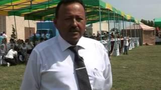 Ахалтекинцы  Узбекистан