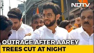 in-cover-of-the-night-shame-aaditya-thackeray-on-aarey-tree-cutting