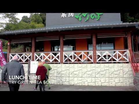 Kyoto Area Tea Tour With Obubu