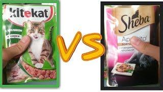 Дорого vs Дешево ( сравнение влажные корма для кошек )