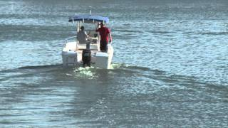 Boats in Water - Boats in Ocean - Fishing Boats - HD Stock Footage