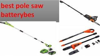 best pole saw batterybes 2021
