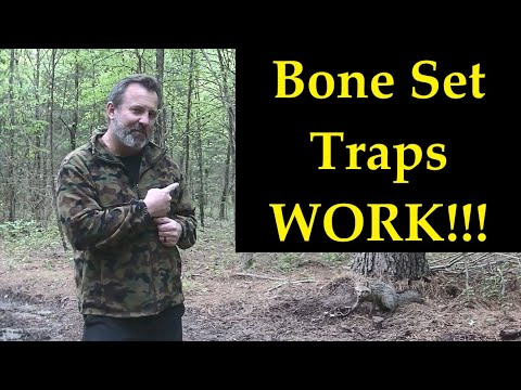 ridgelife:-how-to-make-a-bone-set-trap-(we-caught-a-fox!!!)