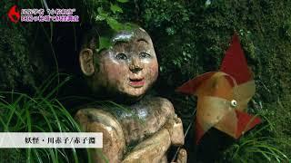 四国のとある山奥に、妖怪が今も人々と暮らしている村があるという。日本の近代化と共にその姿を見せなくなった妖怪がなぜこの村には現代も...