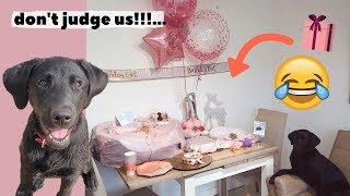 OUR PUPPY'S FIRST BIRTHDAY!!!!... we went all out!