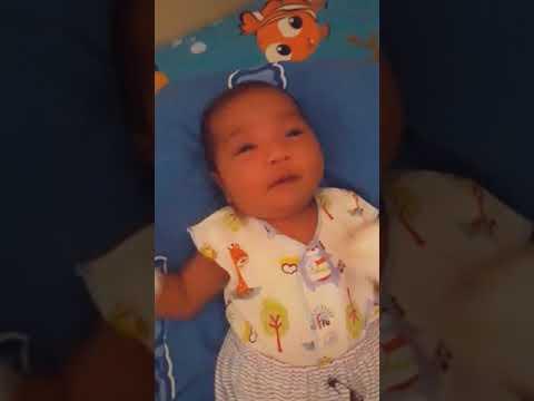 Viral!!! Bayi umur 2minggu goyang Anjing kacili weris