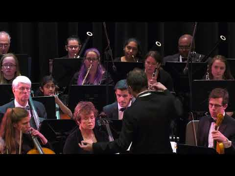 NJIO Concert 2.18.18 Coleridge-Taylor, Smetana, Vivaldi, Offenbach