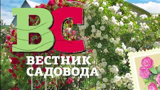 видео Вестник садовода