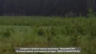 Природа Мать))))