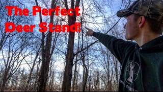 The Perfect Tree Stand Set-up! || Vlog || #009