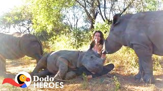 Download Watch This Baby Rhino Fall In love With Her Rescuer's Cat | The Dodo Heroes