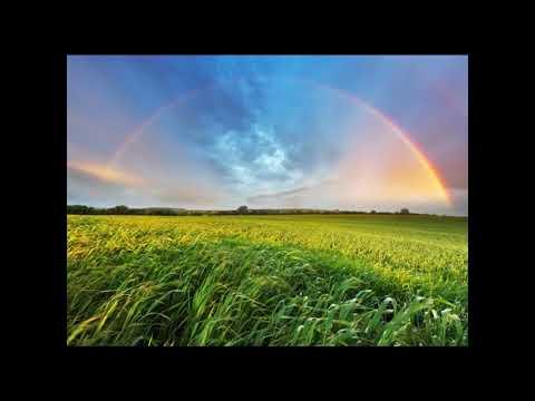 Somewhere Over The Rainbow/What A Wonderful World - Israel Kamakawiwo'ole