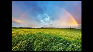 Baixar Somewhere Over The Rainbow/What A Wonderful World - Israel Kamakawiwo'ole