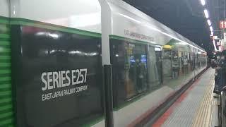 ホリデー快速鎌倉(緑の257系)