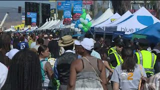 'Taste Of Soul' Festival Delights 300,000 In Crenshaw District