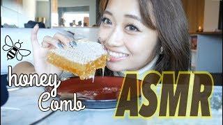 【ASMR】旅先で杏奈ちゃんと初挑戦!HONEYCOMBを初めて食す。